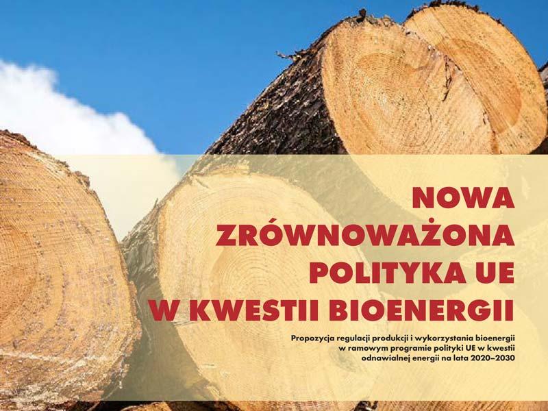 Raport Bioenergia