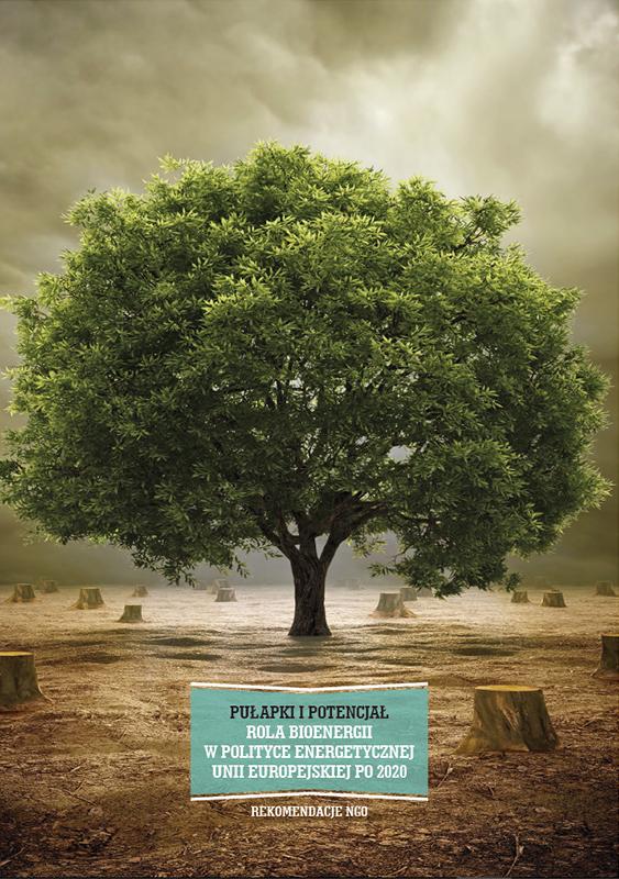 PUŁAPKI IPOTENCJAŁ. Rola bioenergii wpolityce energetycznej Unii Europejskiej po2020 – Rekomendacje NGO – okładka