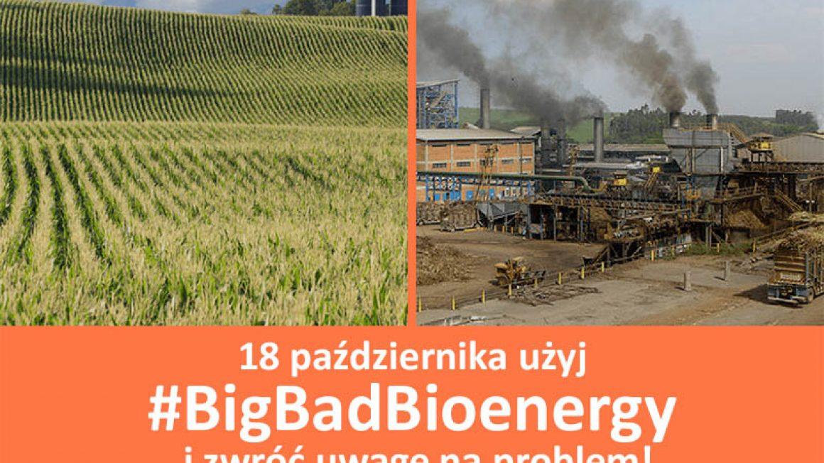 Bioenergy day