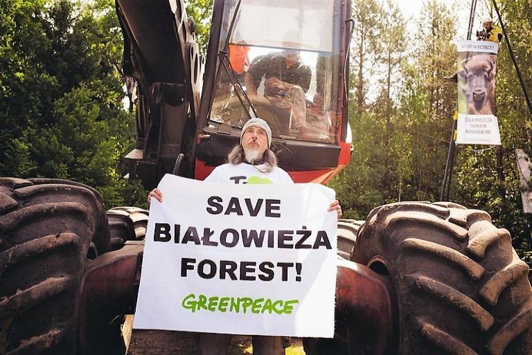 Blokada wycinki wPuszczy Białowieskiej