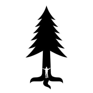 Inicjatywa Dzikie Karpaty
