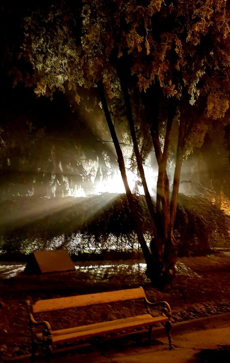 Ukryte piękno fot.Joanna Suciu