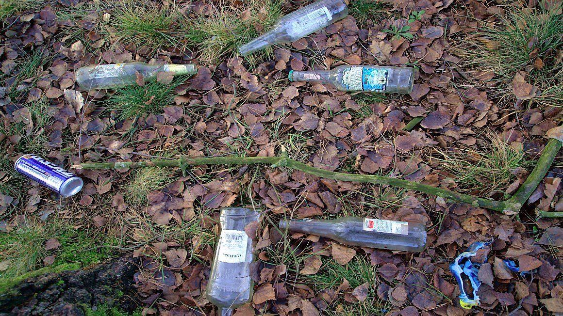 butelki w lesie fot. Jacek Kiełbasiński