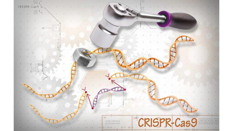 CRISPR_list do ministrów