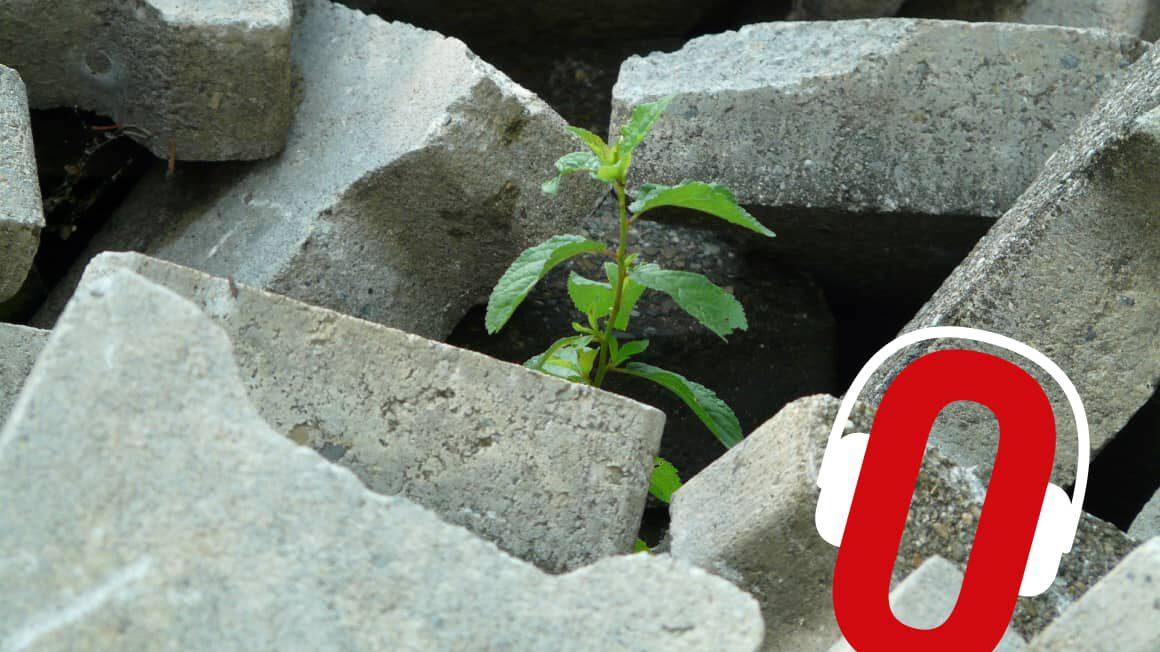 Postwzrost. Pomiędzy wzrostem a katastrofą